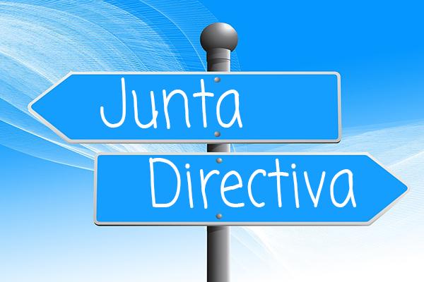 junta directiva AEPNAA