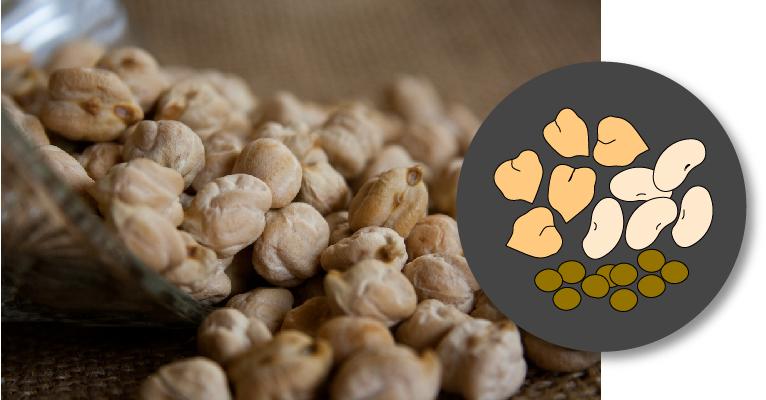 Portada con icono e imagen de legumbres