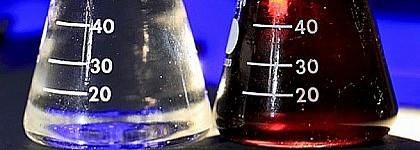 Dióxido de azufre en bulbos de lirio secos procedentes de China, a través del Reino Unido