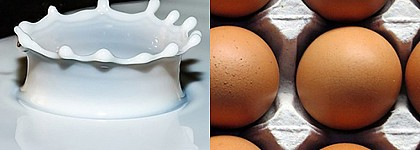 Proteína de leche y proteína de clara de huevo no declaradas en helados procedentes de España